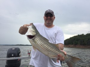 Keystone Lake Striper