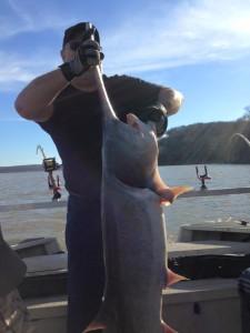 Fort Gibson Lake Spoonbill Paddlefish