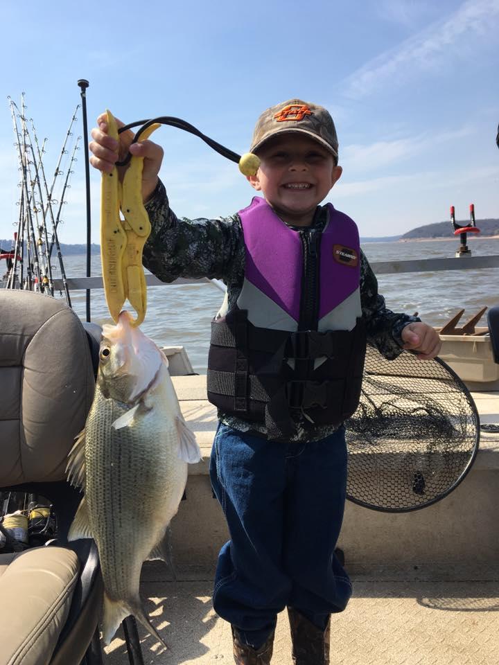 Keystone Lake White Bass aka Sand Bass