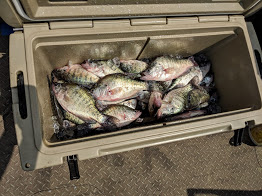 Crappie Fishing Oologah Lake Oklahoma
